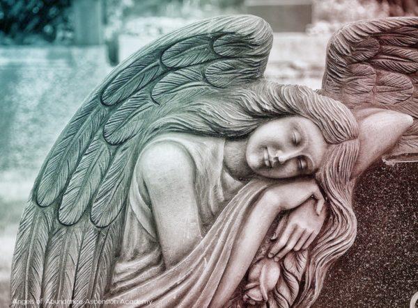 Guardian Angel taking a nap