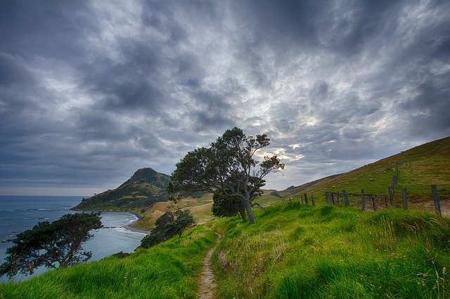 Path in a beautiful landscape by the sea